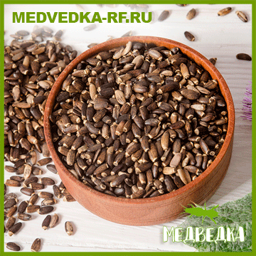 Семена расторопши (50гр)