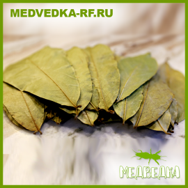 Листья гуанабаны (50гр)